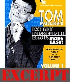 Waters of India video DOWNLOAD (Excerpt of Mullica Expert Impromptu Magic Made Easy Tom Mullica- #1, DVD)