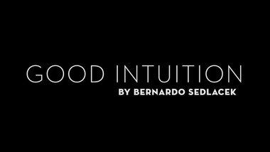 Good Intuition by Bernardo Sedlacek video DOWNLOAD