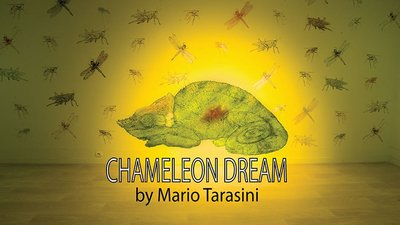 Chameleon Dream by Mario Tarasini video DOWNLOAD