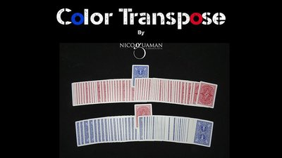 Color Transpose by Nico Guaman video DOWNLOAD